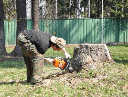 Прибираємо дерева з території будівництва