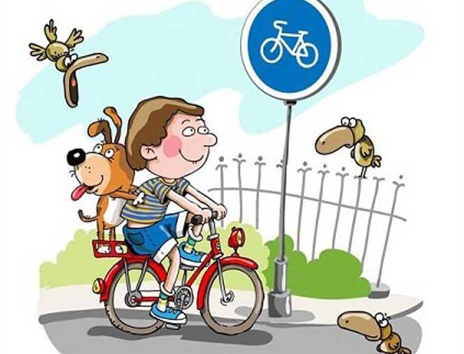 Про що повинен подбати кожен велосипедист
