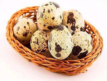 Чому варто вживати перепелині яйця