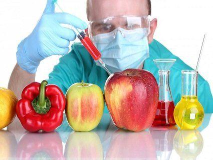 Переваги та недоліки ГМО