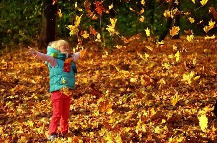 6 листопада погода - сухо та тепло