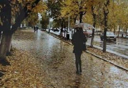 14 листопада погода - йде стійке похолодання, залишаються тумани та мряка