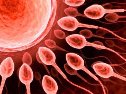 Вчені винайшли спосіб зачаття дітей без жінок
