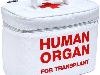 В Україні дозволять пересадку органів від нерідних людей