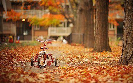 16 листопада погода - переважатиме прохолодна, але суха погода, потішить сонечко