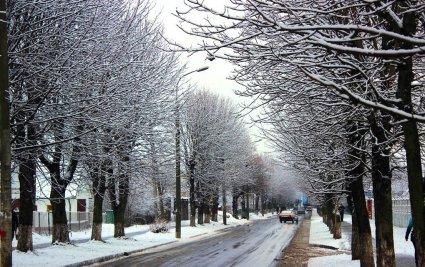 У Луцьку перший сніг