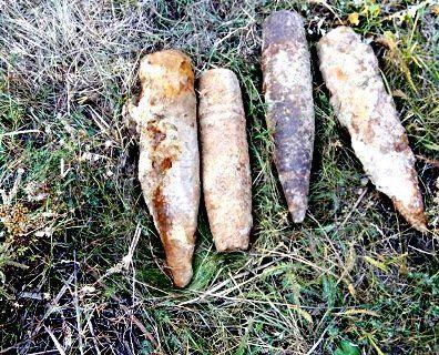 На Волині в лісі поліція виявила схованку боєприпасів