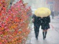 21 листопада погода – мокрий сніг та дощ, місцями тумани
