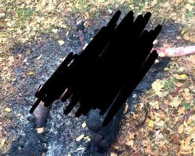 На Одещині іноземці-сатаністи принесли в жертву людину