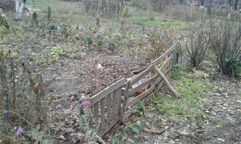 Луцькі муніципали демонтують саморобні паркани