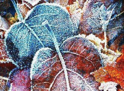 24 листопада: якою буде погода на Волині