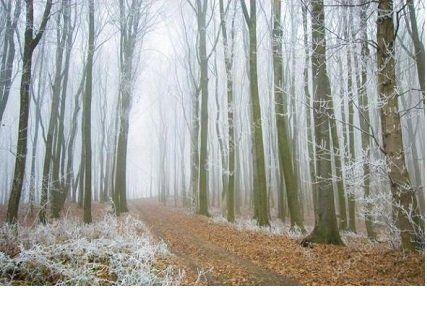 Прогноз погоди на вівторок, 28 листопада