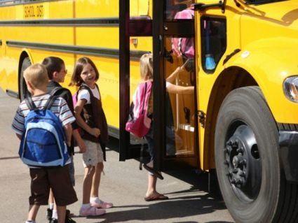 Чи скасують платний проїзд для дітей з багатодітних сімей у Нововолинську?
