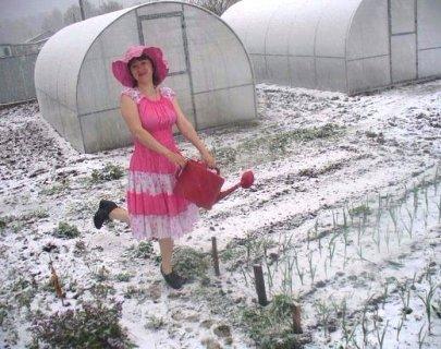 Чому в Україні серед зими настала весна і коли чекати морозів
