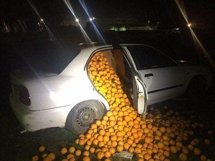 Чотири тонни крадених апельсинів затрамбували в три машини