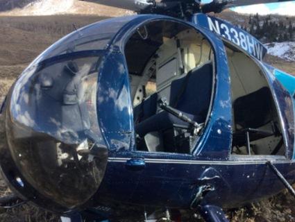 Олень збив вертоліт (відео)