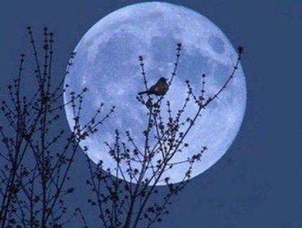 Повний Блакитний місяць: обережно зі здоров'ям