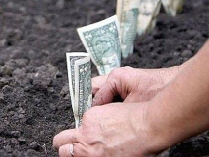 Навіщо українці масово скуповують землю в Польщі