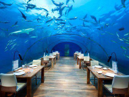 Ресторан під водою Ithaa