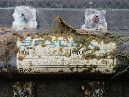 Фермери знайшли частину космічного корабля Маска (фото)