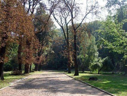 Львів'янам на 72 години заборонили відвідувати парки