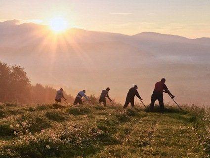 Бригада косарів за сезон заробляє до 30 тисяч гривень