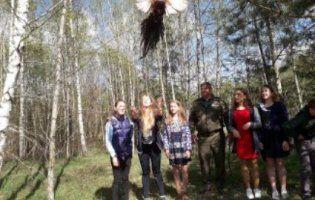 Лісівники випустили у дику природу фазанів