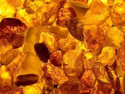 У Луцьку в підпільному цеху виявили майже 100 кілограмів бурштину
