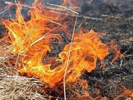 На вихідні оголошують попередження про пожежну небезпеку