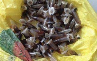 На Кіровоградщині в сімейного підряду наркоділків вилучили 130 доз опіатів
