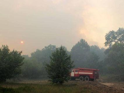 У Чорнобильській зоні досі гасять пожежу