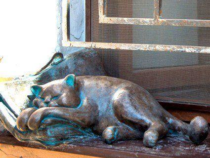 В Одесі з підвіконня вкрали кота Жванецького