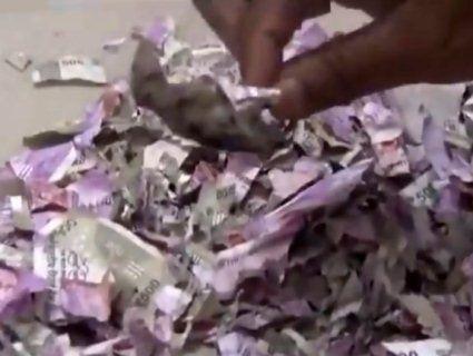 «Миші з'їли»: гризуни всередині банкомата сточили 170 000 доларів