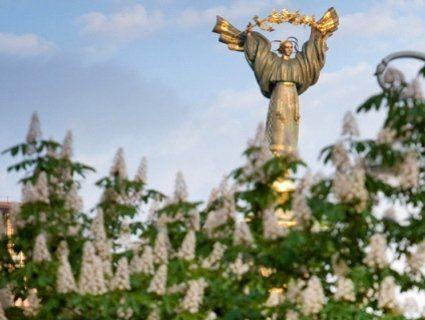 Кияни залишаться без символу міста: замість каштанів висадять горобину?