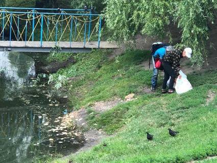 В Києві нелюди годують диких птахів отрутою: тушками всіяні береги водойми (фото)