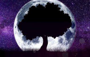 Місячний календар на 17 серпня