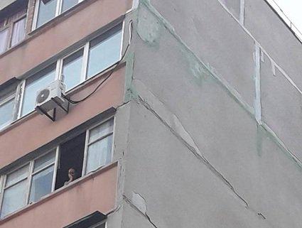 П'яна жінка викинула з сьомого поверху на очах у дітей собаку (відео)