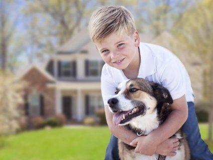 Які собаки добре ладнають з дітьми?