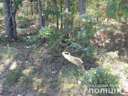 Знайшли вбивцю житомирянина, якого зарубали і викинули біля цвинтаря