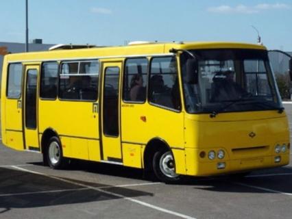 У Луцьку побільшає громадського транспорту
