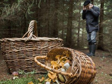 В Карпатах знайшли тіло грибника, якого шукали дві доби