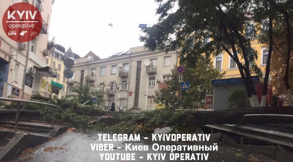 стихія Київ