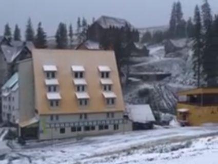 А на Закарпатті засніжило: з'явилося відео снігопаду в горах