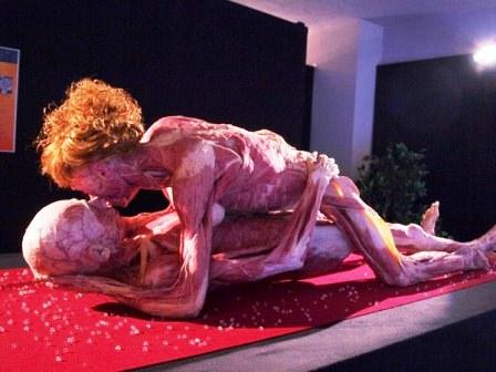 Виставка Body Worlds у Лондоні фото 6