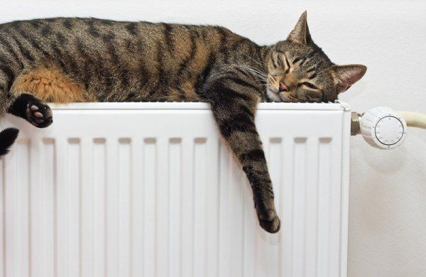 Коли в луцьких квартирах буде тепло? Опалювальний сезон переноситься?