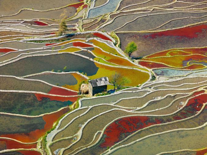 National Geographic - Рисові поля в провінції Юньнань, Китай
