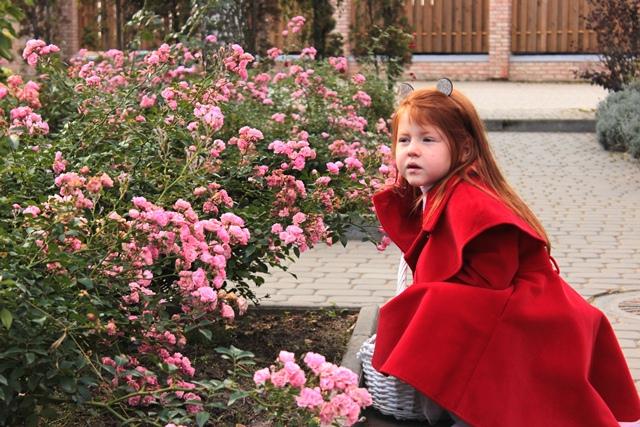 Осінній Луцьк від фотографки Олександри Власюк