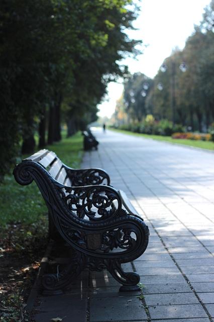 Осінній Луцьк від фотографки Олександри Власюк фото 1