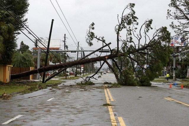 США Флорида ураган Майкл фото 2