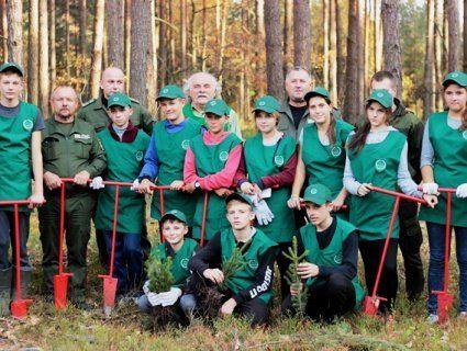 Як журналісти із лісівниками і юннатами волинській ліс відновлювали (фоторепортаж)